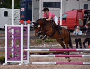 Hevonen: Solranda Belissa<br> Kuvaaja: Netta Mustanoja